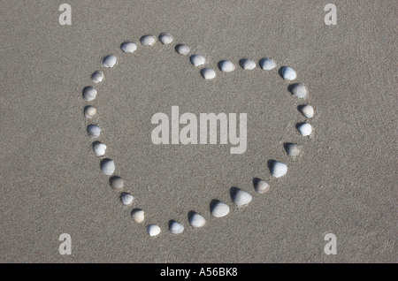 Herz aus Muscheln am Strand der Nordsee, Dänemark - Stockfoto