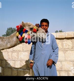 Ägyptische junge und Kamel in der Nähe der Pyramiden, Gizeh, Kairo, Ägypten, Nordafrika - Stockfoto