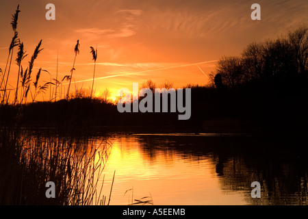 Sonnenuntergang über Coate Water Country Park - Stockfoto