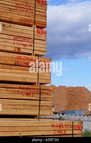 Holz und einem Berg von Hackschnitzel für Japan Puerto Montt Chile gebunden - Stockfoto