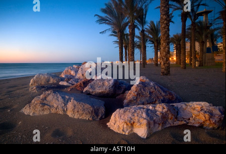 Palmen am Strand von La Cariheula, Torremolinos, Andalusien, Spanien - Stockfoto