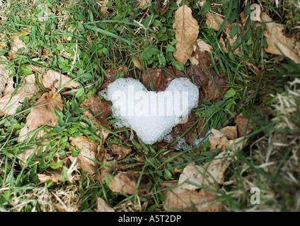Eis in Form von Herzen in Rasen - Stockfoto