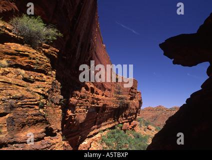 Kings Canyon, Australien VI - Stockfoto