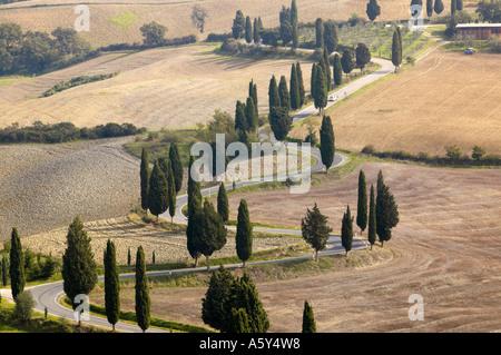Landstraße in der Nähe von Monticello, Toskana, Italien - Stockfoto
