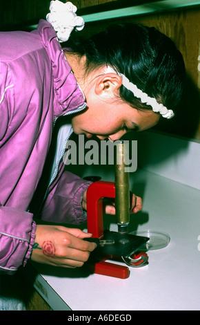 16424 zehn Jahre altes Mädchen verwendet Mikroskop Brine Shrimp von Salt Pond zu prüfen - Stockfoto