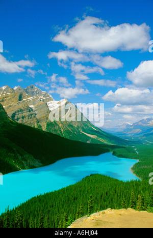Peyto Lake von Bogen Summitt an Sommernachmittagen aus gesehen - Stockfoto