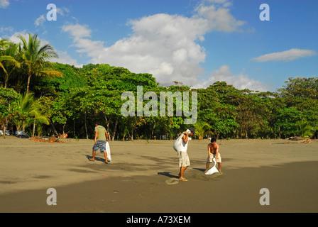 Freiwillige Emptiing Sandsäcke, Matapalo Beach, Costa Rica, Mittelamerika - Stockfoto