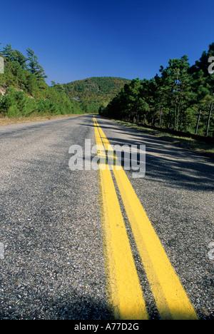TALIMENA SCENIC DRIVE, OUACHITA NATIONAL FOREST, OKLAHOMA. FALLEN. - Stockfoto