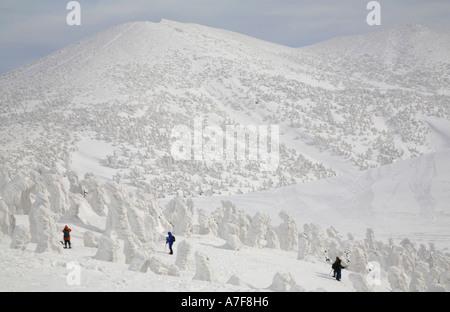 Aomori Schnee Monster Eis bedeckte Bäume Verwaltungssitz Berg Aomori Tohoku Japan Winter Reisen - Stockfoto