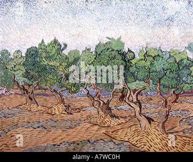 Bildende Kunst, Gogh, Vincent van (1853 - 1890), Olivenbäumen, rosa Himmel, Malerei, Saint Remy 1889, Öl auf Leinwand, 730 x 925 cm, Rijksmuseum Van Gogh, Amsterdam,, Artist's Urheberrecht nicht gelöscht werden