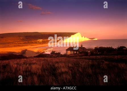 Beachy Head South Downs East Sussex England Uk - Stockfoto