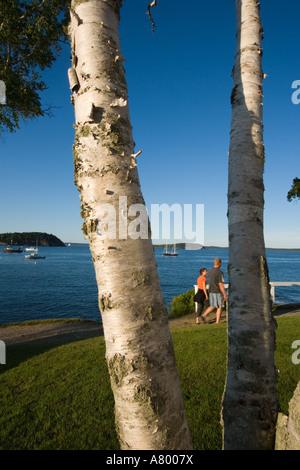 Franzose Bucht gesehen vom Ufer Weg in Bar Harbor, Maine USA - Stockfoto