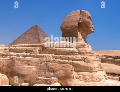 Seitenansicht auf Sphinx Ägypten - Stockfoto