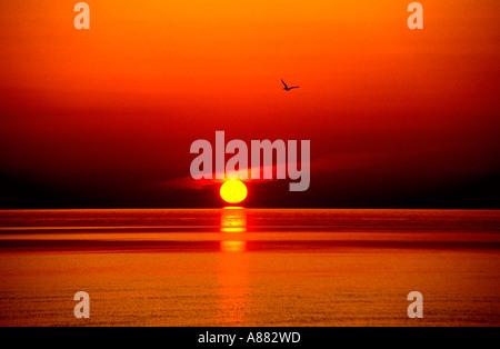 Blick auf die untergehende Sonne über dem Horizont des Ozeans - Stockfoto