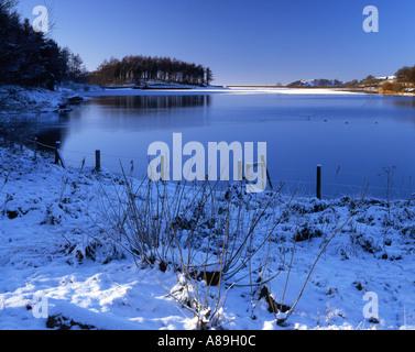 Ridgegate Reservoir in Macclesfield Winterwald, Peak District National Park, Cheshire England UK - Stockfoto