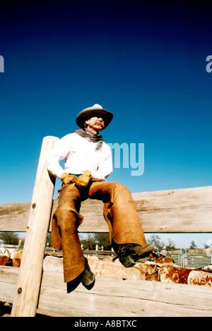 Fort Worth Texas Cowboy - Stockfoto