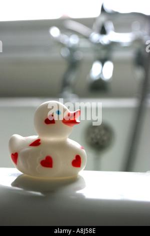 Rubber Duck - Stockfoto