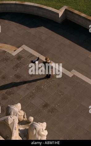 Elster Sturzflug auf Wache, Shrine of Remembrance, Melbourne, Australien - Stockfoto