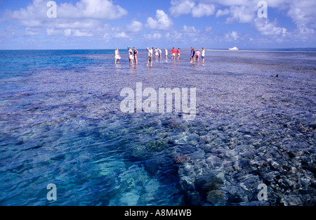 Touristen zu Fuß am Great Barrier Reef N Queensland Australien horizontalen Riff - Stockfoto