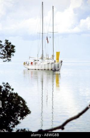 Segelboot mit den Segeln nach unten nahe dem Ufer in Biscayne Bay Miami Florida - Stockfoto