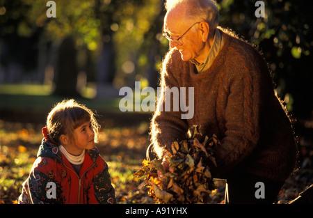 Großvater sammeln Herbst Blätter mit Enkelin - Stockfoto