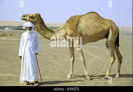 Beduin mit arabischen Kamel in der Wüste, Oman, Wahiba Sands - Stockfoto