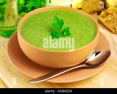 BRUNNENKRESSE-SUPPE - Stockfoto