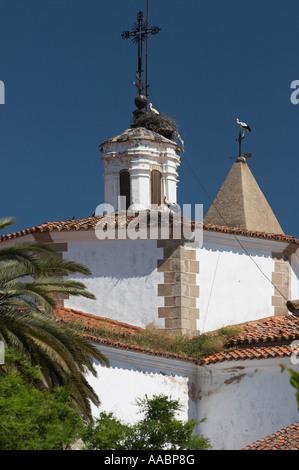 Weißstörche (Ciconia Ciguena) und Nester auf Kirchendach, Cáceres, Extremadura, Spanien, España, Europa - Stockfoto