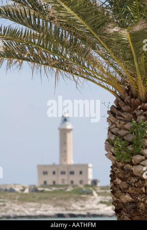 Palme mit Out-of-Focus Leuchtturm, Vieste, Gargano, Pugli, Italien - Stockfoto