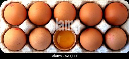 eine gebrochene Ei in eine volle Schachtel - Stockfoto