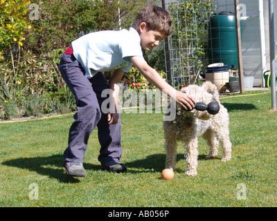 Ein kleiner Junge spielt mit seinem Welsh Terrier Hund im Garten in Almere, Niederlande - Stockfoto