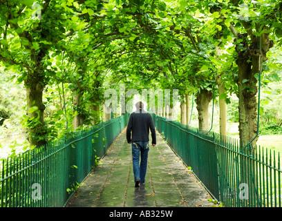 Mann 25 30 zu Fuß durch den Baum gesäumt Birdcage Walk Clifton Bristol England - Stockfoto