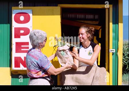 Weibliche Kunden den Kauf lokal gewachsen frischer Mais zum Verkauf an Drive Thru produzieren stehen, Fraser Valley, - Stockfoto