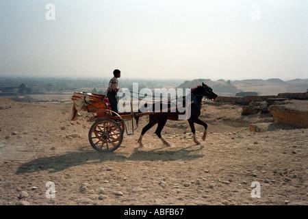 Ein kleiner Junge, ein Pferd und Wagen über das Gizeh-Plateau in der Nähe von Kairo fahren - Stockfoto