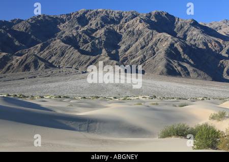 Sanddünen mit Mesquite Flats mit dem Schuttkegel der Panamint Range als Kulisse, Death Valley, Kalifornien, USA - Stockfoto