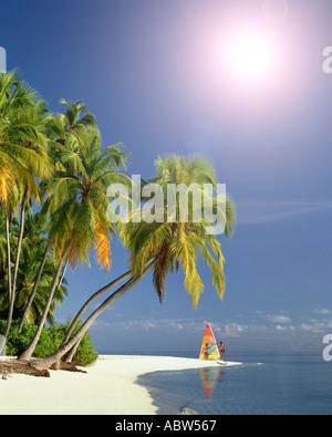 MV - Malediven: Strand entlang des Indischen Ozeans - Stockfoto