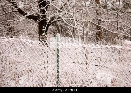 Schnee auf Maschendrahtzaun, Ann Arbor Michigan USA - Stockfoto