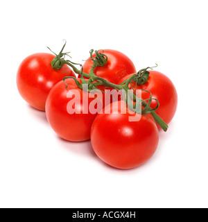 Ein Bündel oder reif frisch Rebe Reife rote Tomaten - Stockfoto