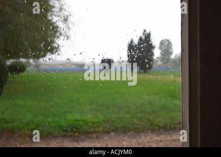 ... Blick Durch Ein Fenster über Den Park Garten Weinberg, Tropfen Regen  Auf Dem Fenster Im