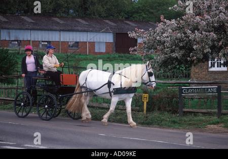 Fahrsport: Frau und Mädchen gezogen von einem weißen Pferd auf einem Feldweg in der Nähe von Leigh, Surrey, England - Stockfoto