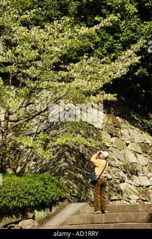 Japan Honshu Insel Kyoto ein Mann die Bilder von Frühling Blüte - Stockfoto