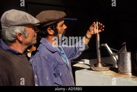 Portugal Douro Tal Port Wein Mann Männer testen Trauben - Stockfoto