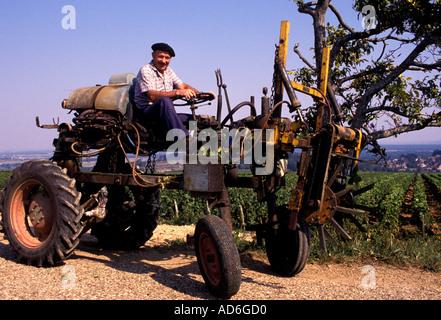 Wein Frankreich Bourgogne Traktor alte Bauer Mann Burgund - Stockfoto