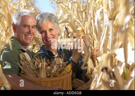 Kaukasische Senior couple lächelnd Kommissionierung Herbst golden Mais im Maisfeld - Stockfoto