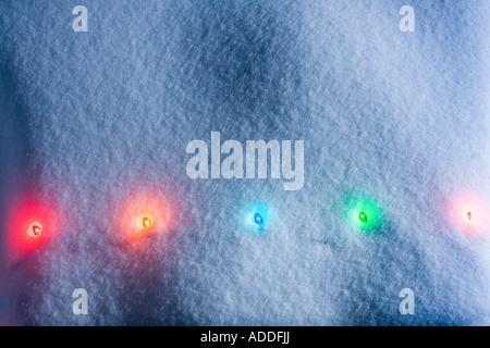 1 Strang Multi farbige Weihnachtsbaum Lichter durchschimmern frische Decke aus Schnee Winter Alaska - Stockfoto