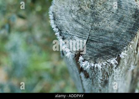 Frost auf hölzernen Pfosten - Stockfoto