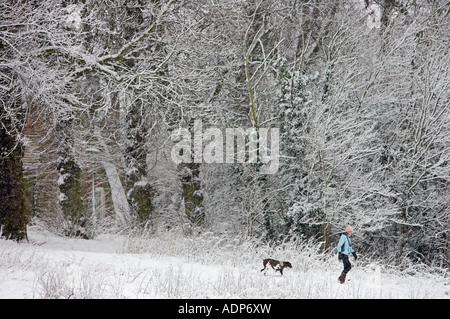 Frau geht der Hund auf Winter s Tag über Schnee Hampstead Heath North London Vereinigtes Königreich bedeckt - Stockfoto