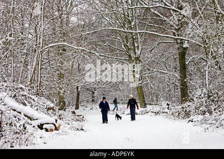 Paar zu Fuß den Hund über Schnee bedeckt Hampstead Heath North London Vereinigtes Königreich - Stockfoto