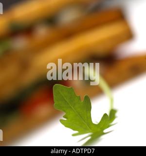 Einsame Rakete Blatt mit Sandwich im Hintergrund - Stockfoto