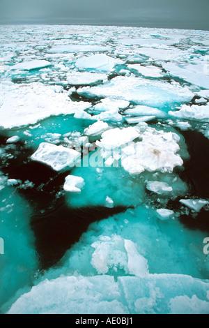 Treibeis Packeis Eisfeld actic Ozean Treibeis Packeis Eisfeld Arktis Kreation Svalbard Spitzbergen Norwegen Norwegen - Stockfoto